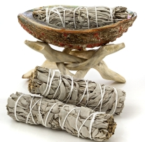 Sage bundles with Abalone shell holder